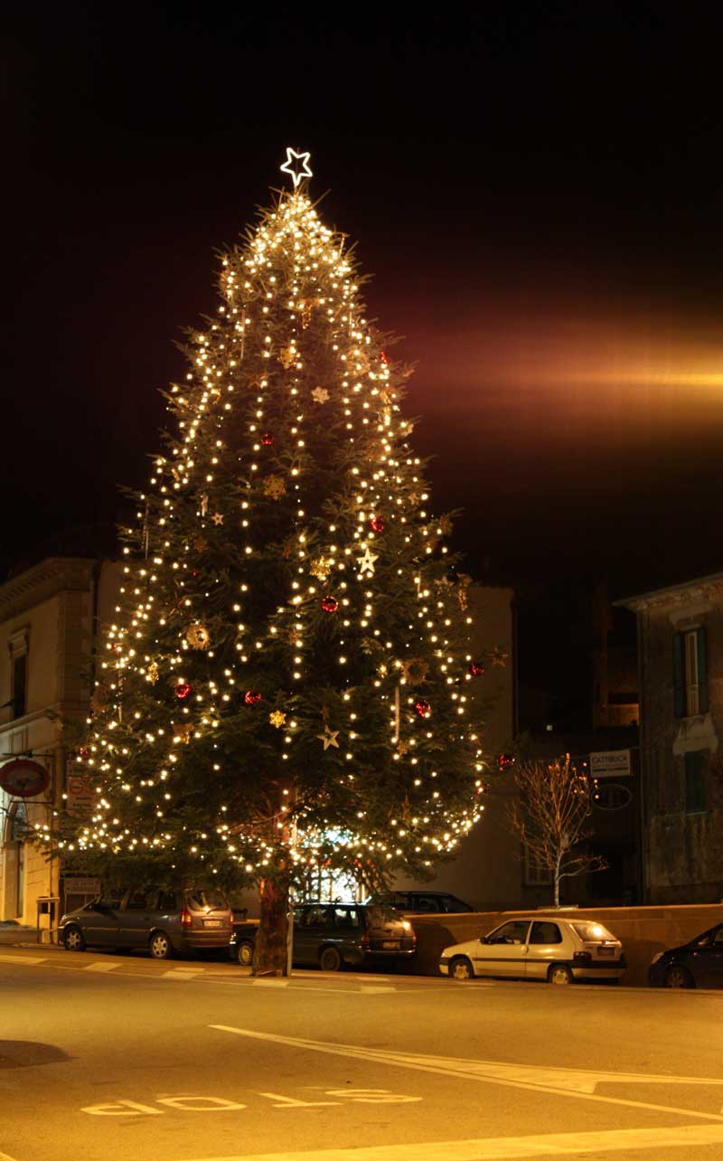 L 39 albero di natale valentano come new york for Immagini new york a natale